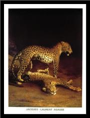Two Leopards Playing In The Exeter Chang art print poster with simple frame