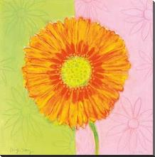 Orange Daisy art print poster with block mounting