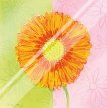 Orange Daisy art print poster with laminate
