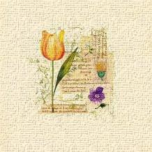 Flower Notes With Orange Tulip art print poster transferred to canvas