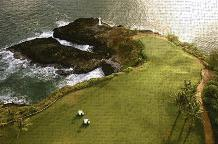 Golf Course, Hawaii Coast art print poster transferred to canvas