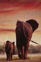 Elephant Walking with Calf art print poster transferred to canvas