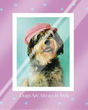 Always in Style art print poster with laminate