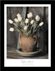 Tulips On Bench art print poster with simple frame