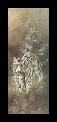 White Tigers art print poster with simple frame