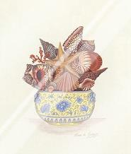 Seashell Collection III art print poster with laminate