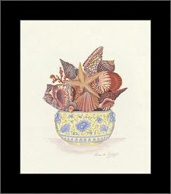 Seashell Collection III art print poster with simple frame