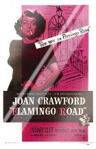 Flamingo Road art print poster with laminate