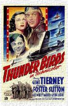 Thunder Birds art print poster transferred to canvas