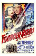 Thunder Birds art print poster with laminate
