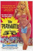 Playmates in Deep Vision 3-D art print poster transferred to canvas