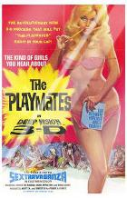 Playmates in Deep Vision 3-D art print poster with laminate