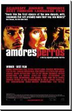 Amores Perros art print poster with block mounting