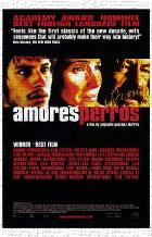 Amores Perros art print poster transferred to canvas