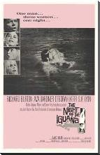 Night of the Iguana, the art print poster with block mounting