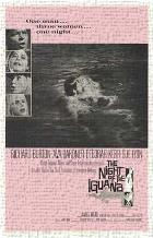 Night of the Iguana, the art print poster transferred to canvas