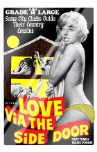Love Via the Side Door art print poster with laminate
