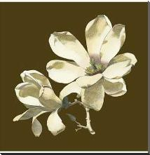 Magnolia on Taupe I art print poster with block mounting