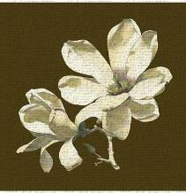 Magnolia on Taupe I art print poster transferred to canvas
