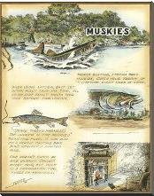Muskies art print poster with block mounting