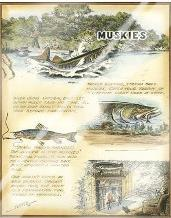 Muskies art print poster with laminate