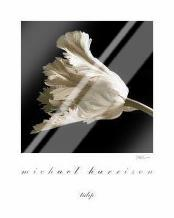 Tulip art print poster with laminate