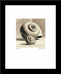 Spirality art print poster with simple frame