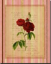 Botanical Rose III art print poster with block mounting