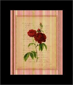 Botanical Rose III art print poster with simple frame