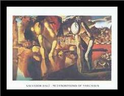 Metamorphosis of Narcissus art print poster with simple frame
