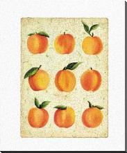 Peach Collage art print poster with block mounting