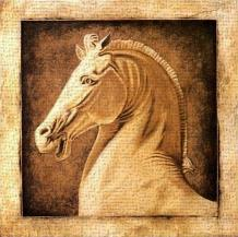 Equus art print poster transferred to canvas