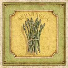 Asparagus art print poster transferred to canvas