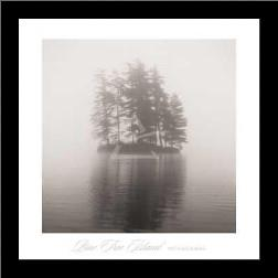 Pine Tree Island art print poster with simple frame