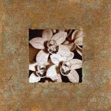 Orchids on Copper art print poster transferred to canvas