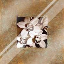 Orchids on Copper art print poster with laminate