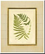 Fern With Crackle Mat (H) III art print poster with block mounting