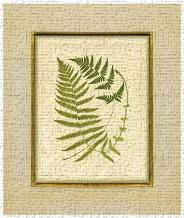 Fern With Crackle Mat (H) III art print poster transferred to canvas