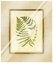 Fern With Crackle Mat (H) III art print poster with laminate