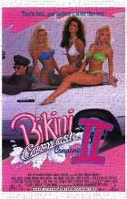 Bikini Carwash Company 2 art print poster transferred to canvas