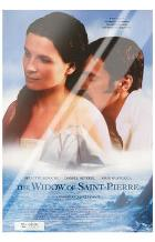 Widow of Saint-Pierre, the art print poster with laminate