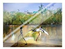 Jabiru Billabong art print poster with laminate