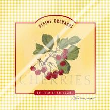 Cherries art print poster with laminate