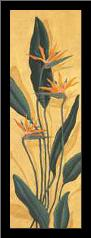 Bird Of Paradise art print poster with simple frame