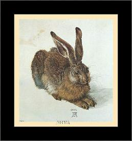 Young Hare art print poster with simple frame