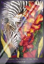 Celebrate The Colors Of The Wild art print poster with laminate