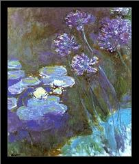 Waterlilies and Agapanthus art print poster with simple frame