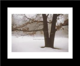 Tranquility art print poster with simple frame