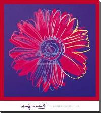 Daisy, C 1982 (Blue And Red) art print poster with block mounting