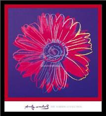 Daisy, C 1982 (Blue And Red) art print poster with simple frame